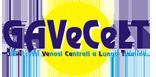 Corso teorico pratico: Gestione dell'accesso venoso centrale nel neonato e nel bambino