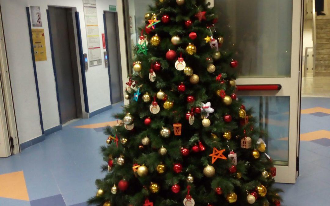 Inizia il Natale al Pausilipon